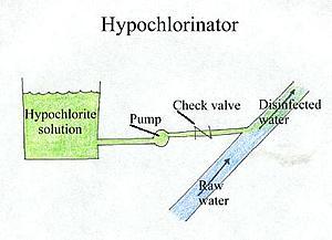 Description: http://water.me.vccs.edu/courses/ENV195Micro/clipart/hypochl.jpg